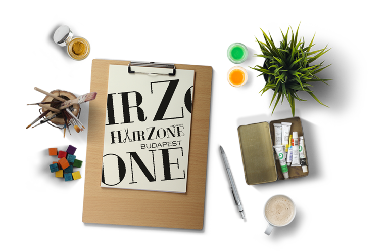 Visual Design - HairZone logo design